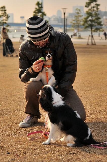 2008.12.13(初まんまちゃん) 139
