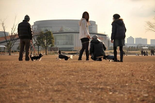 2008.12.13(初まんまちゃん) 121
