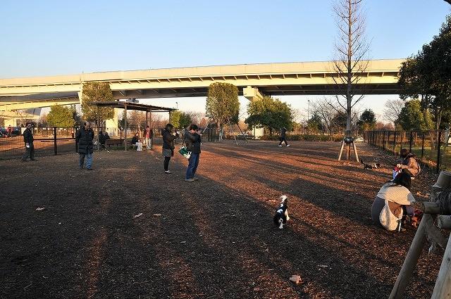 2008.12.23(舎人公園&カフェ) 053
