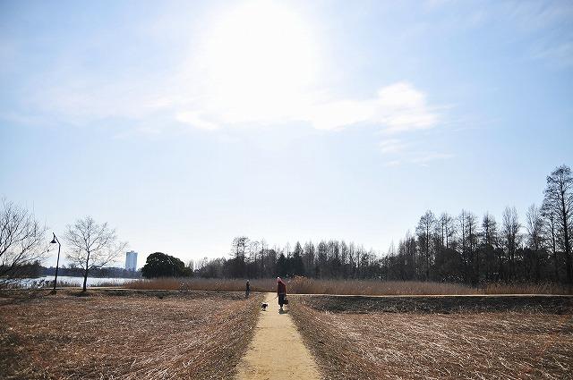 望2008.1.5(水元公園&わん茶房) 079