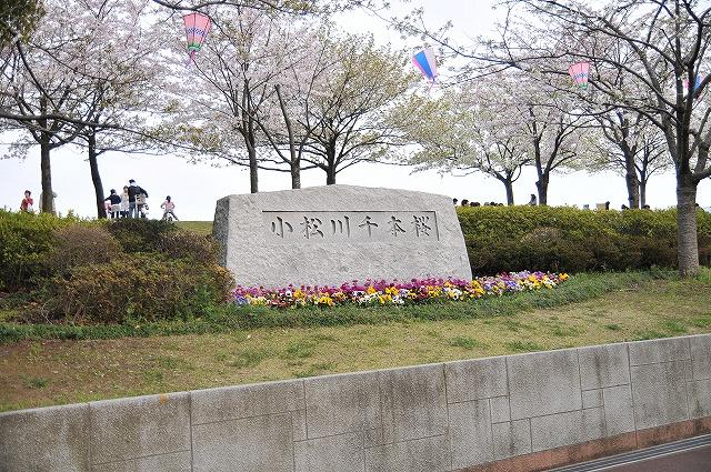 2009.4.5(小松川千本桜) 107
