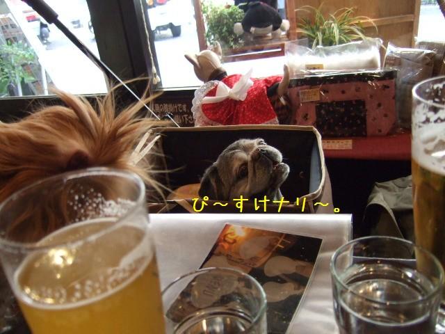 2009.4.19(えにわん) 006