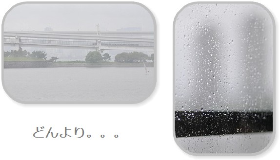 2009.5.6(雨のお台場) 065a