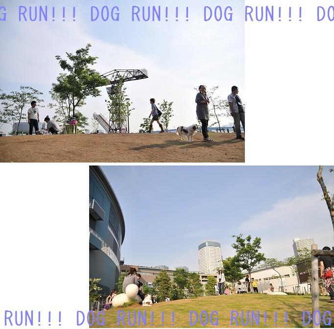 2009.5.10(ららぽーと豊洲) 119a
