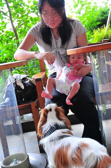 2009.7.4(サンバス) 030