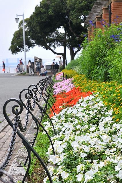 2009.7.5(横浜) 056