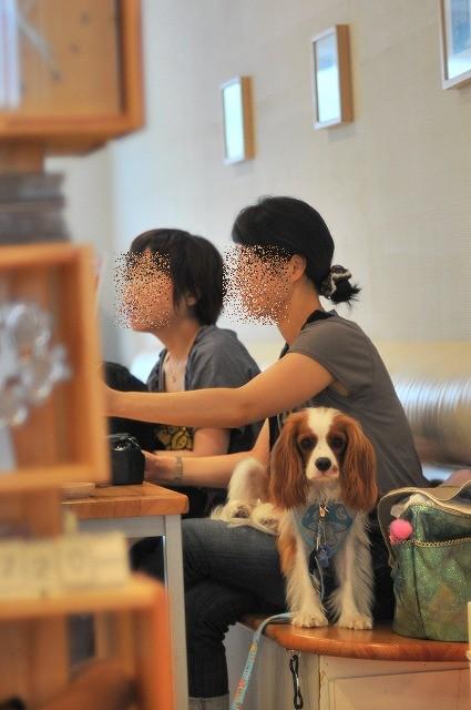 2009.7.20(浅草&亀戸1) 026
