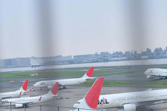 2009.8.2(空の会) 278