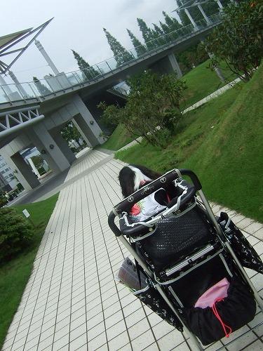 2009.8.8(癒しフェア) 074