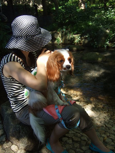 2009.8.15(親水公園) 212