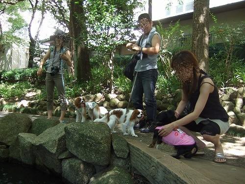 2009.8.15(親水公園) 121
