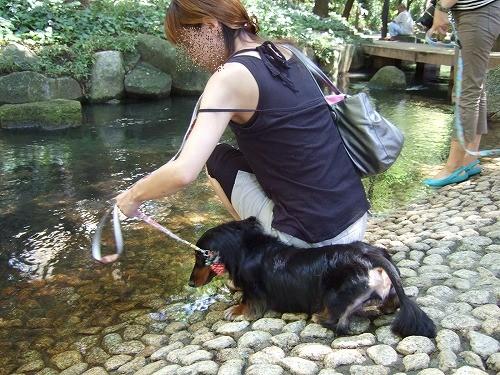 2009.8.15(親水公園) 126