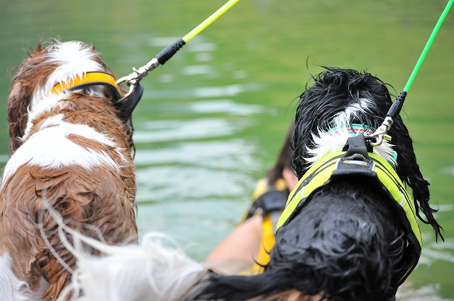 2009.8.29(名栗湖カヌー体験) 089