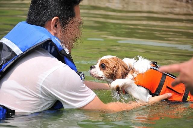 2009.8.29(名栗湖カヌー体験) 039