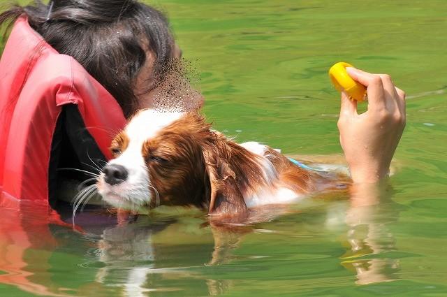 2009.8.29(名栗湖カヌー体験) 152