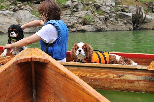 2009.8.29(名栗湖カヌー体験) 268