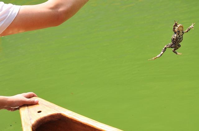 2009.8.29(名栗湖カヌー体験) 254