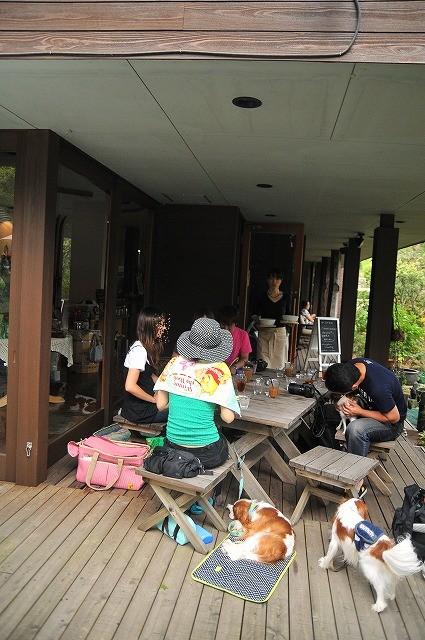 2009.8.29(名栗湖カヌー体験) 376