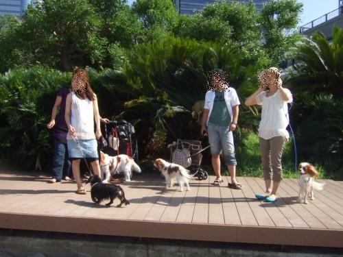 2009.9.6(お台場うしすけ) 064