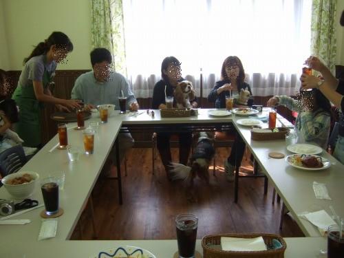 2009.11月(水元誕生日会&ブブズ) 042