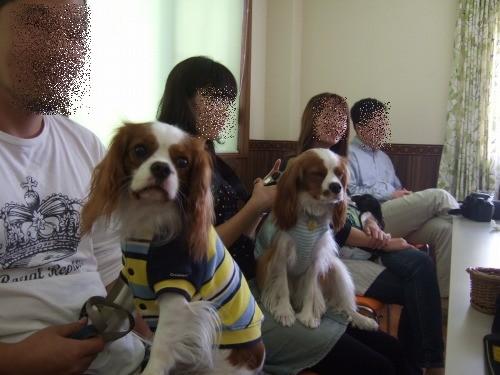 2009.11月(水元誕生日会&ブブズ) 046