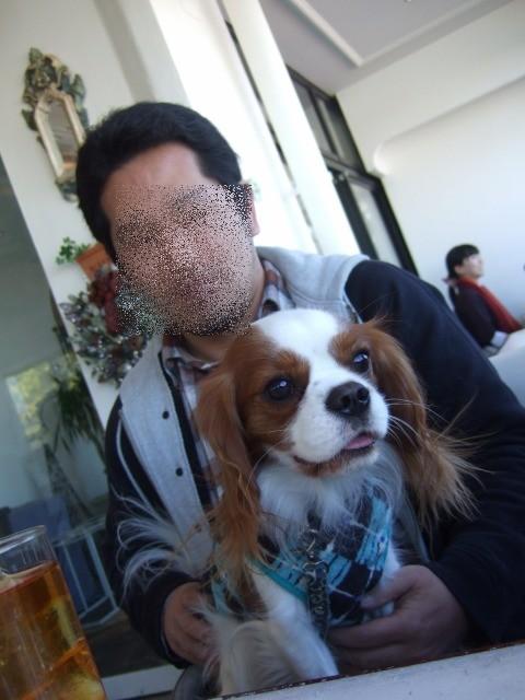 2009.12.20(お台場) 010