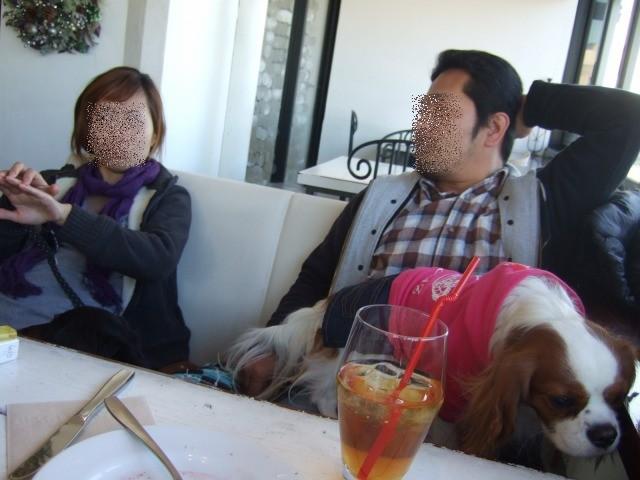 2009.12.20(お台場) 035