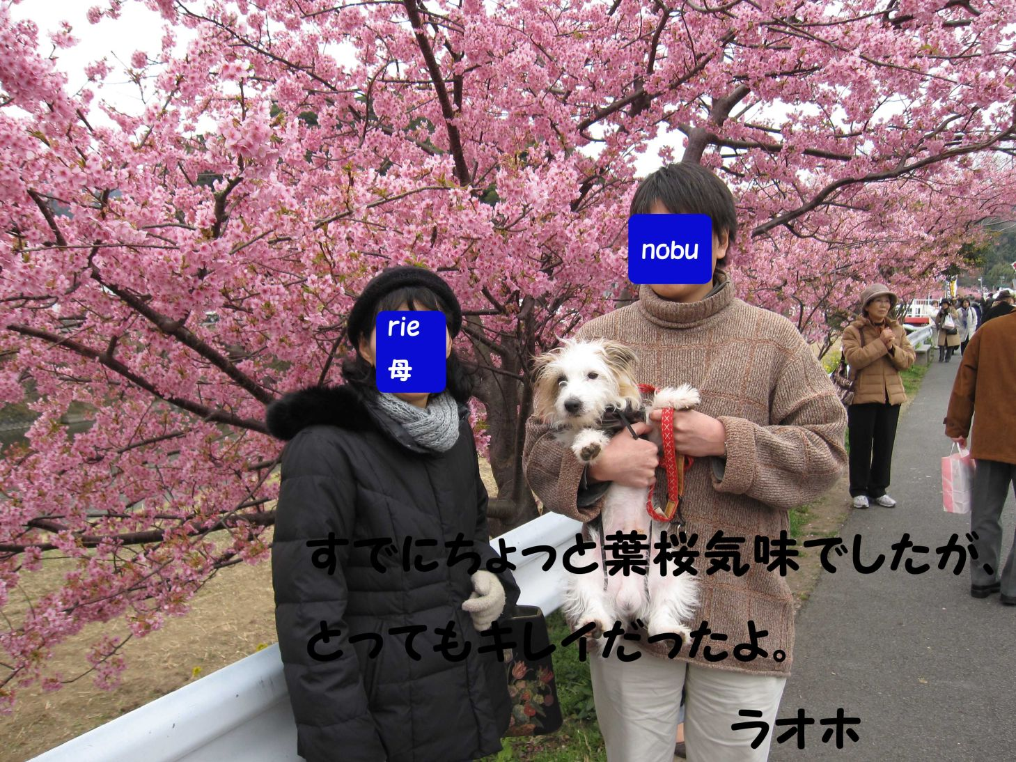 s_nobuとrie母