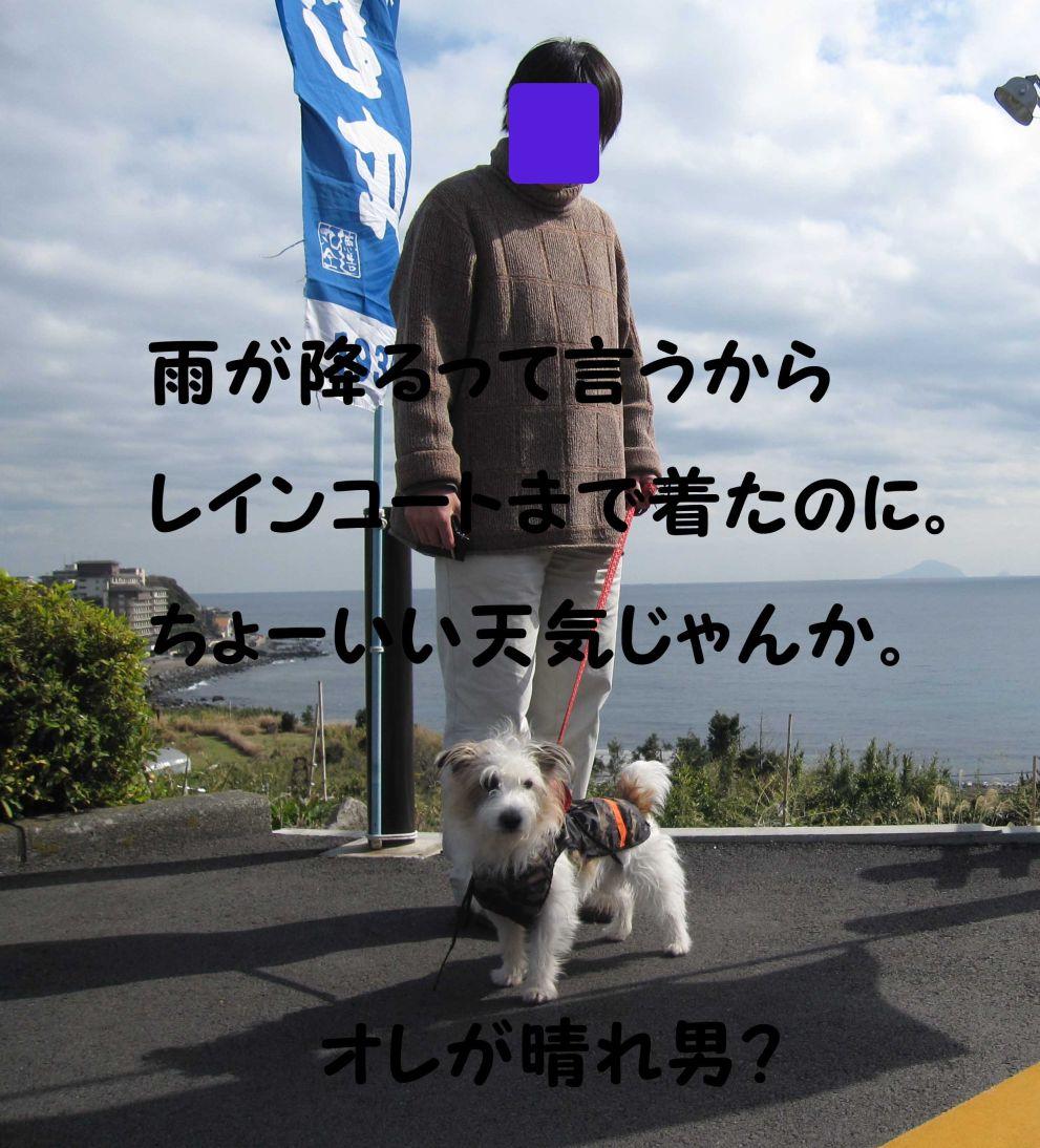 s_晴れ男