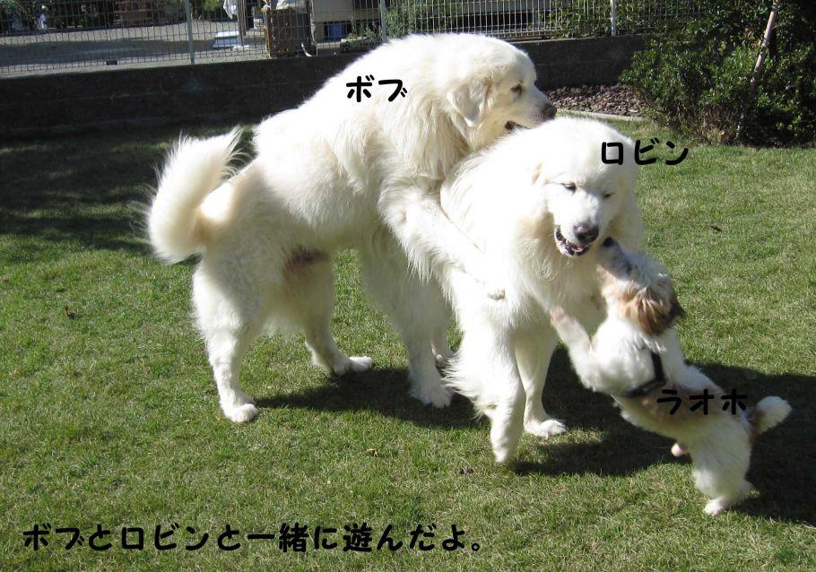 s_FRIENDS.jpg