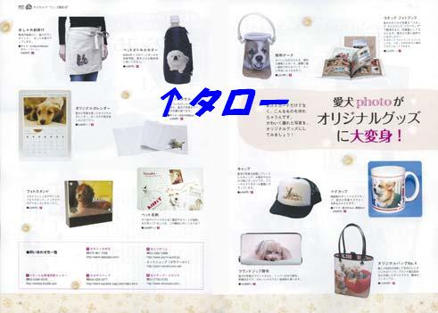 m_wan2.jpg
