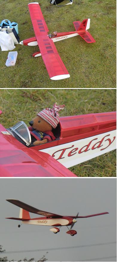 teddy1105.jpg