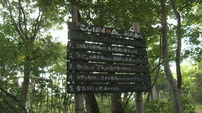 コンパスの森説明板
