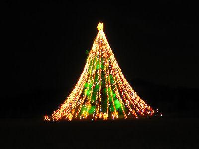 宮ヶ瀬のクリスマスツリー