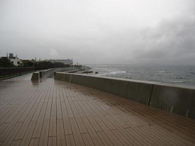 台風みたいな空だ~。