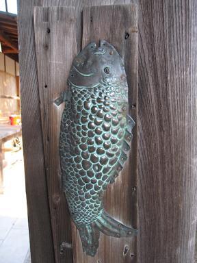 柱に居たお魚どん。