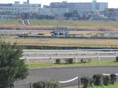 川崎競馬場のトレーニングエリアに来ました!