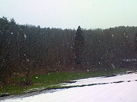 090216粉雪