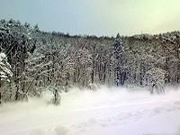 090217雪景色