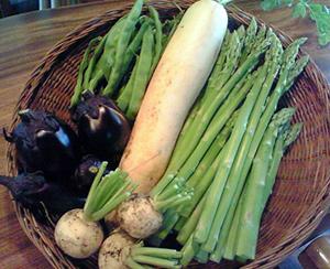 090716夏野菜