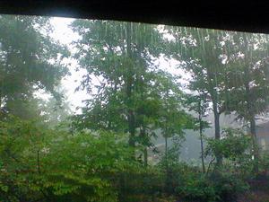 090731雨