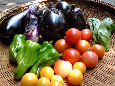 090804朝採り野菜