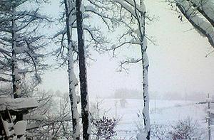 091222雪景色