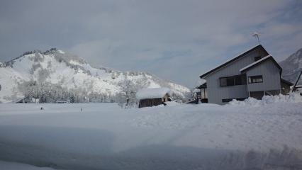 240115雪景色