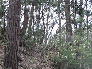 20080422