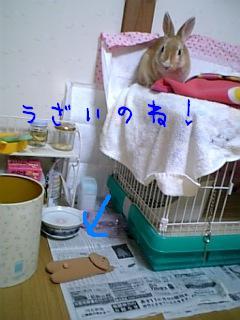 070121_165156.jpg