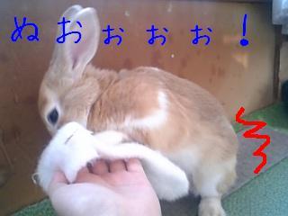 070203_140336_ed.jpg
