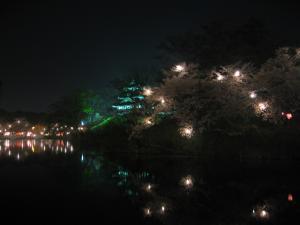 夜の櫓と堀4