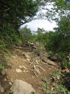 最初の方の登山道