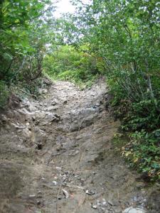 中間くらいの登山道